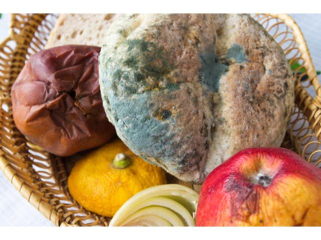 Куплю просроченные продукты питания